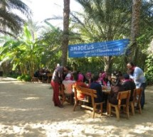 Amadeus Tunisie: Team Building au coeur du Djérid