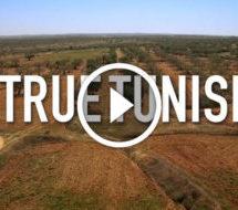 #True Tunisia: le 4e épisode tourne dans le sud-ouest