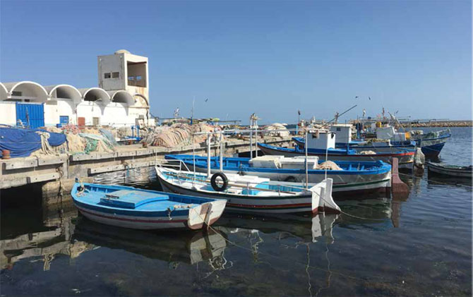 Kerkennah_Tunisie-3