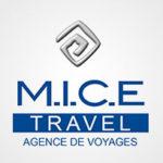 Mice Travel